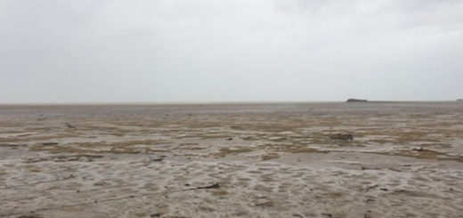 Irma desapareció el océano en las Bahamas | Foto: Twitter
