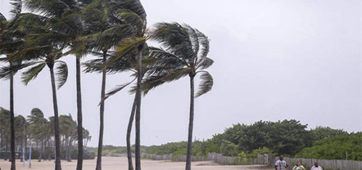 Miami Beach reabre el acceso tras el huracán Irma | Foto: Cortesía