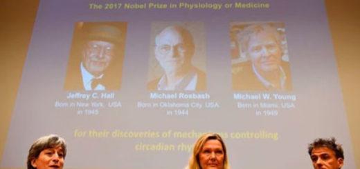 Los descubridores del reloj biológico del cuerpo humano ganan el Nobel de Medicina 2017 | Foto: AFP