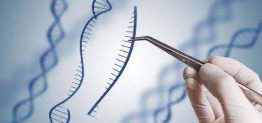 Científicos pretenden corregir el anomalías genéticas |Foto: Getty Images