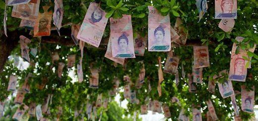 Árbol del dinero en Maracaibo | Foto: La Verdad