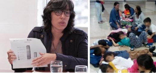 Viceministra, Andrea Hermoso se refirió a la situación de los niños |Composición: Notitotal
