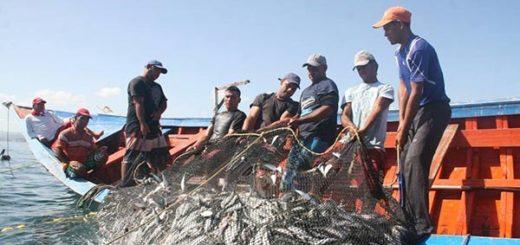 Prohíben pesca de sardinas desde el #15Dic |Foto: El Universal