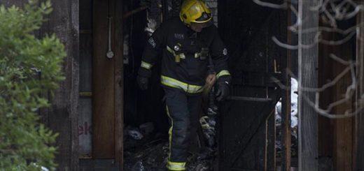 Incendio en zoológico de Londres | Foto: EFE