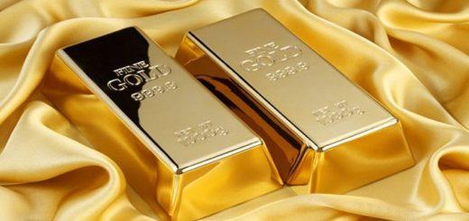 linhgotes de oro